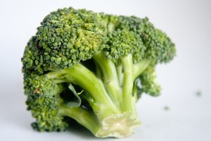 Broccoli: Protein Rich Plants